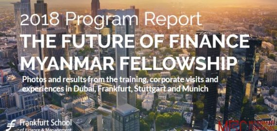 The Future Of Finance Myanmar Fellowship Germany Visit